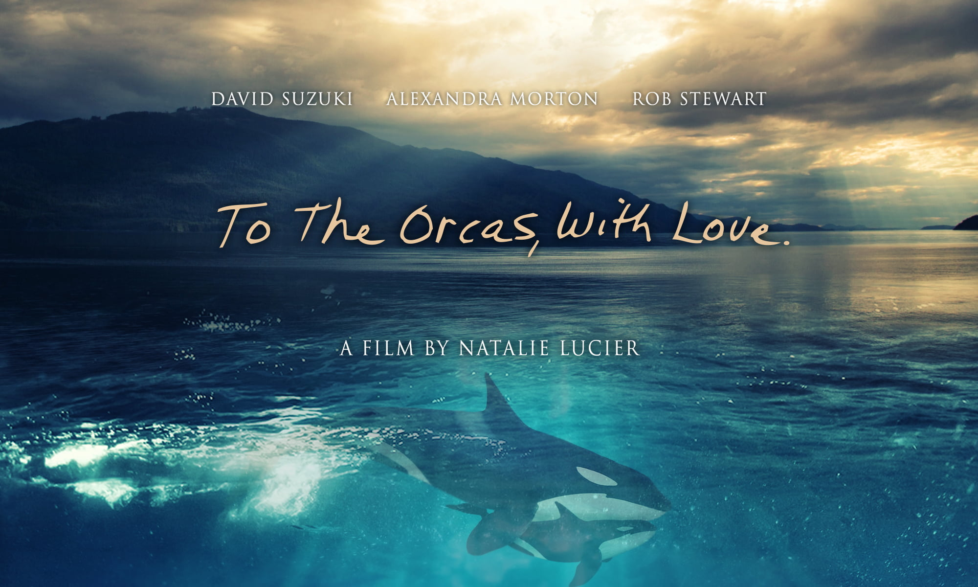 photo from To the orcas with love